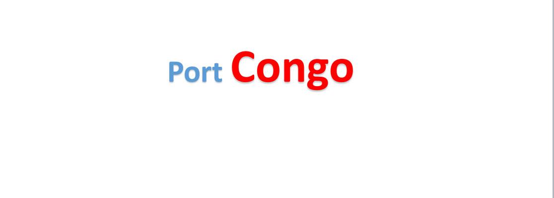 congo sea port Container