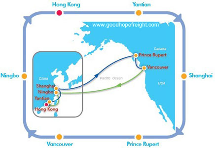 cosco container tracking cpnw