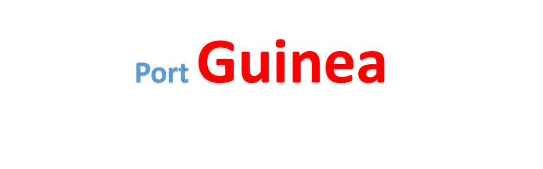 Guinea Sea port Container